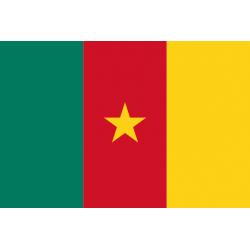 Drapeaux Cameroun